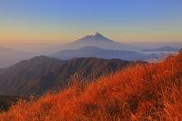 山梨県 朝日に染まる富士山と山並み