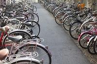 自転車置き場に止められた自転車