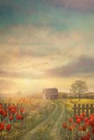 チューリップ咲く農村の道