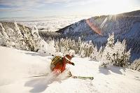 アメリカ スキーする人物
