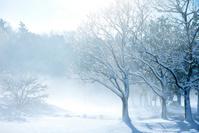 千葉県 雪景色