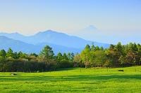 山梨県 八ヶ岳牧場 残雪の山並みと新緑の牧場