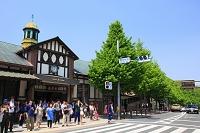 東京都 渋谷区 原宿駅
