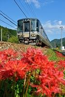 兵庫県 福知山線