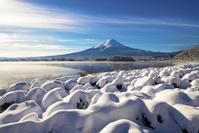 日本 山梨県 河口湖からの富士山