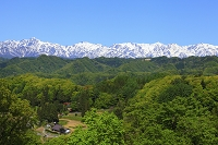 長野県 残雪の後立山連峰と新緑の山村