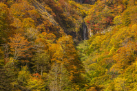 福島県 アイヨシの滝