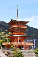 和歌山県 西国三十三所第1番札所 青岸渡寺三重塔と那智滝