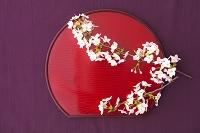 桜と赤い盆