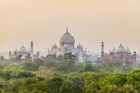 インド タージマハル
