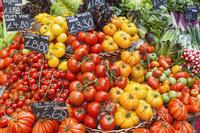 色々なトマト