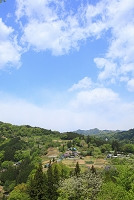 長野県 新緑の山村