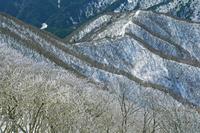 三重県 藤原岳展望丘から霧氷と山陵