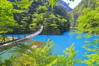 静岡県 寸又峡 夢の吊橋と寸又川