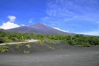 静岡県 御殿場登山口(新五合目) 夏の富士山と青空