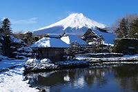 山梨県 忍野より富士山