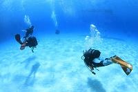 ケラマの海とダイバー