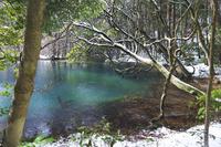 山形県 丸池様の冬