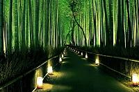 京都府 嵐山花灯路