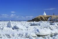 北海道 納沙布岬と流氷