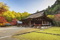 滋賀県 西明寺