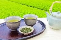 日本茶と春の新茶と茶葉