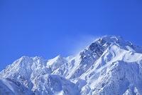長野県 雪の北アルプス五竜岳と青空