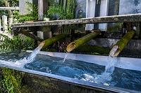 熊本県 阿蘇神社の神の泉