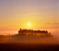 染まる, 日の出と光芒