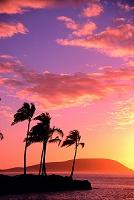 ハワイ 日の出
