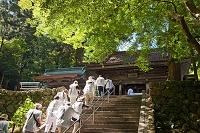 愛媛県 新緑の明石寺遍路さん