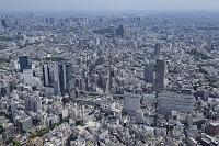 渋谷駅より恵比寿方向