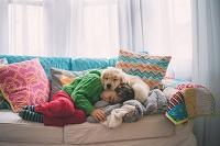 ソファで眠る子どもと犬