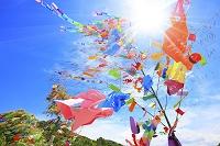 風に揺れる七夕の笹飾りと青空