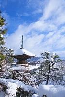 京都府 雪の常寂光寺