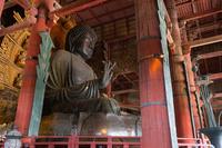 奈良県 東大寺 盧舎那仏坐像