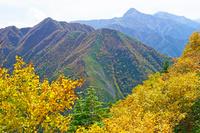 長野県 駒津峰から北岳と中央とアサヨ峰左の山