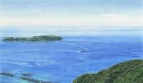 富士見峠からの眺め(東京・新島)