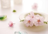 白いテーブルに飾ったピンクの桜の花