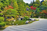 京都府 仁和寺 庭園 紅葉