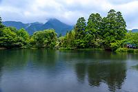 大分県 小雨の金鱗湖