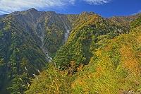 長野県 爺ケ岳中腹から鳴沢岳左と岩小屋沢岳右の山