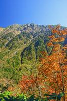 岐阜県 登山道から西穂高岳