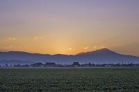 滋賀県 夜明け前の伊吹山
