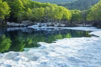 山形県 雪解けの地蔵沼