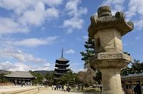 奈良県  興福寺 五重塔 東金堂