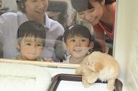 ペットショップで犬を見る日本人家族