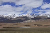 草原を走る青蔵鉄道と山 チベット