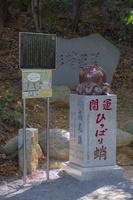 東京都 秋の高尾山 ひっぱり蛸