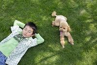芝生に寝転ぶ男の子と犬
